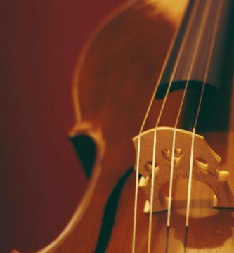 violin stentor 4/4 precio