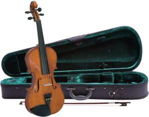 violines 1/2 precio
