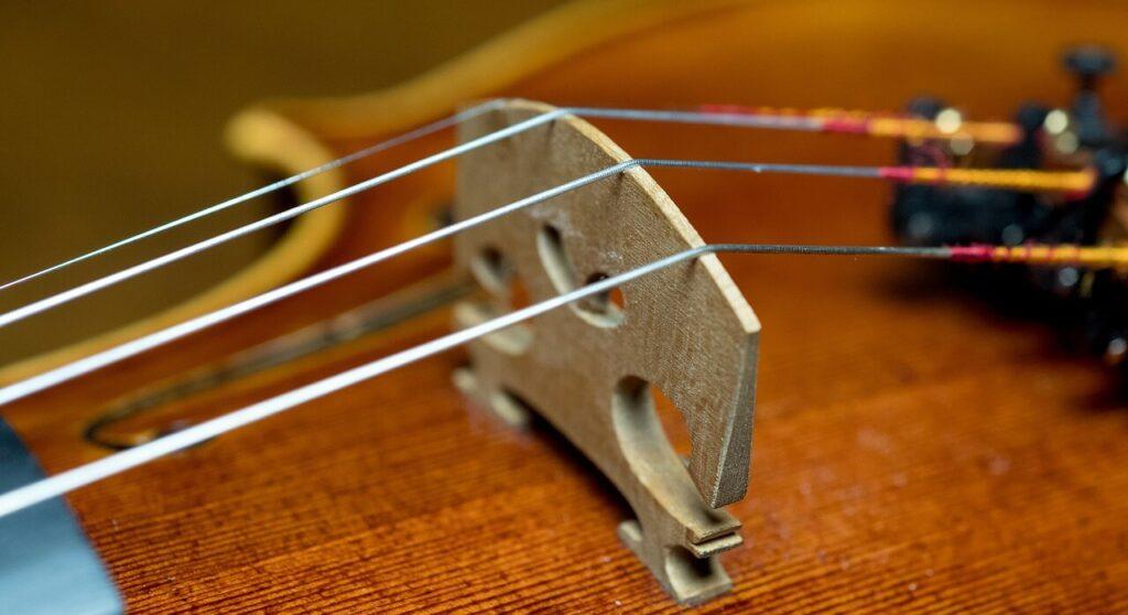 cuerdas de violin precio amazon