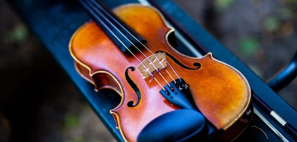 estuche para violin precio